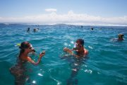 snorkeling in bali fun for the entire family