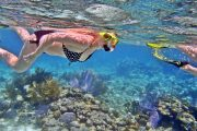 bali leading snorkeling tours