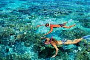 come join us for the best snorkeling in bali