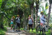 bali cycling tours are perfect family fun