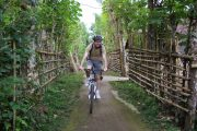 bali cycling tours the best way to see Ubud