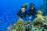 work underwater with Scuba Diving Bali - PADI Rescue Diver Course