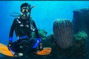 padangbai underwater world. fun fish scuba dive