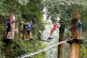 Bali tree top takers you high off the ground