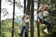 Bali tree top challenge yourself