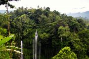 the amazing tour of sekumpul Waterfall Bali