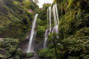 come join us on the sekumpul Waterfalls tour